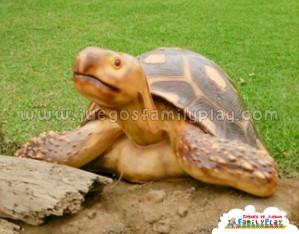 Escultura de Tortuga